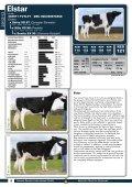 2012/13 - GGI German Genetics International GmbH - Page 6