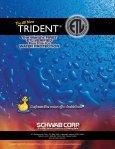 Schwab Trident Brochure in PDF! - Page 4