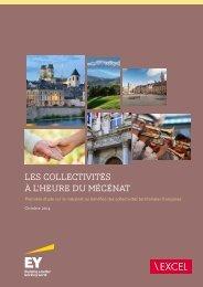 EY-etude-mecenat-collectivites-territoriales-2014