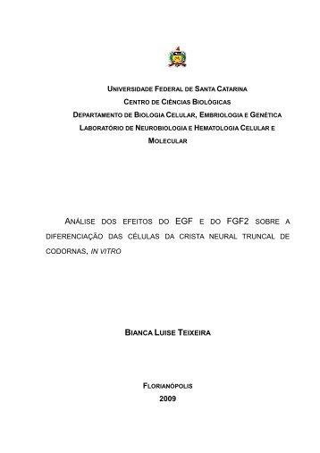 TCC_Bianca L. Teixeira - Centro de Ciências Biológicas - UFSC