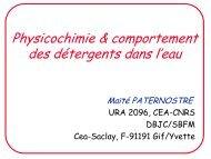 Physicochimie & comportement des détergents dans l'eau - LISM