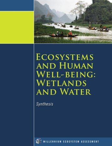 Ecosystems and human well-being : wetlands and water ... - UNEP