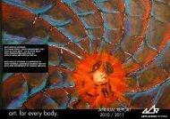 Annual Report 2010 – 2011 (PDF) - Arts Access Victoria