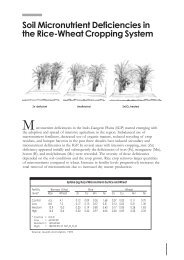 soil micronutrient deficiencies in the rice-wheat cropping system.pdf