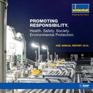 HSE Annual Report 2012