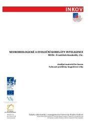 funkční systémy lidského mozku - Fakulta informatiky a managementu