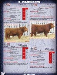 Lots 89-100 - SaskLivestock