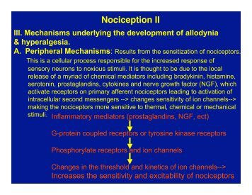 III. Mechanisms Underlying The Development Of Allodynia A