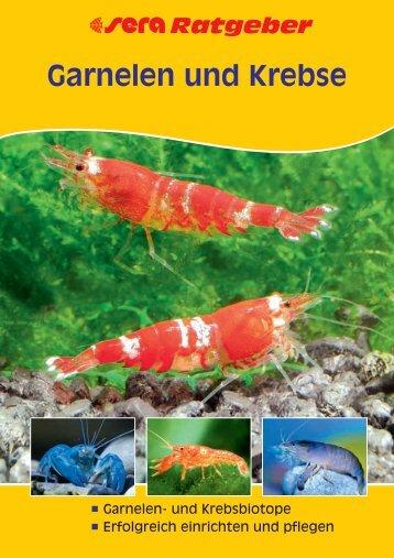 Garnelen und Krebse - Aquaristik-Shop