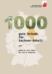 gute Gründe für Sachsen-Anhalt - IG BCE - HALLE-MAGDEBURG