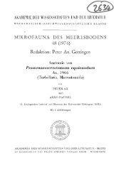 akademie der wissenschaften und der literatur - Macrostomorpha