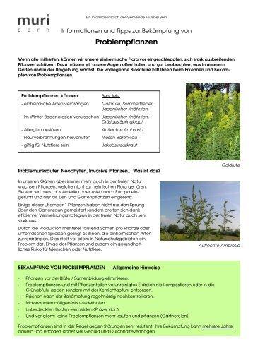 Problempflanzen (Invasive Neophyten - Muri bei Bern