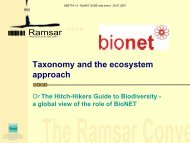 Taxonomy and the ecosystem approach - BioNET