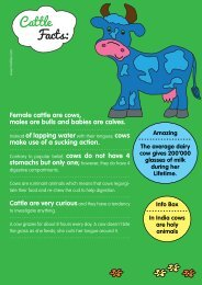 cow facts - Motlies