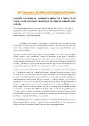 Mudas Tubete - Fundação Bahia