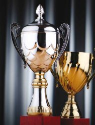 2012 Global PERE Awards, along with brief profiles ... - Patron Capital