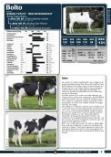 stieren catalogus 2012/13 - GGI German Genetics International GmbH - Page 5
