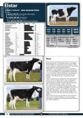 stieren catalogus 2012/13 - GGI German Genetics International GmbH - Page 6
