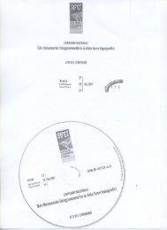 2007_06 - Dipartimento di Ingegneria Civile