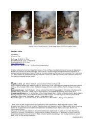 Angelika Loderer Ausstellung Akademie Graz Eröffnung: 03.05 ...