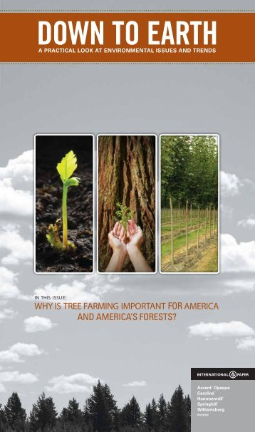 Tree Farming - International Paper