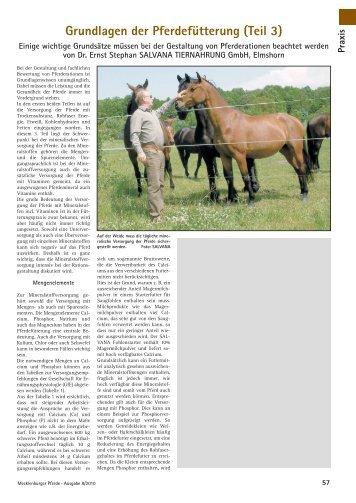 Grundlagen der Pferdefütterung (Teil 3) - SALVANA