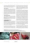Zahn - ROYAL CANIN Tiernahrung GmbH & Co. KG - Seite 6