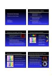 Fluorescence microscopy - Biomedicum Imaging Unit (BIU) - Helsinki.fi