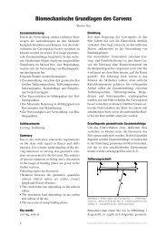 Biomechanische Grundlagen des Carvens