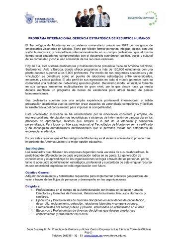 PROGRAMA INTERNACIONAL GERENCIA ESTRATÉGICA DE ...