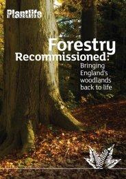 Forestry Recommissioned: Bringing England's woodlands ... - Plantlife