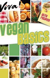 Vegan Basics Guide - Viva! USA