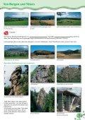 Heimatkunde Erzgebirge - Page 3