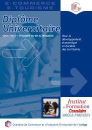 Diplôme Universitaire - CCI Ariège