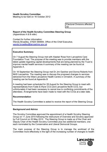 Report of the Health Scrutiny Committee Steering Group