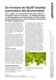Buchenwaldbewirtschaftung der BaySF - Nationalpark Steigerwald