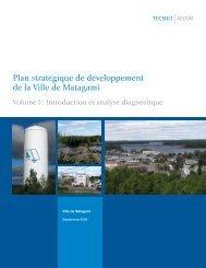 Plan stratégique de développement de la Ville de Matagami
