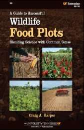 A guide to successful wildlife food plots - Department of Forestry ...