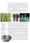 Téléchargez le dossier de presse - Châteauroux - Page 7
