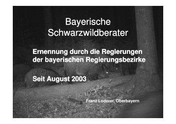 3 Schwarzwildberater je Regierungsbezirk