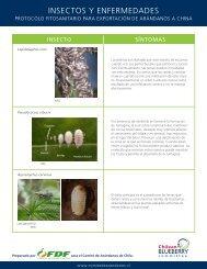 INSECTOS Y ENFERMEDADES - Comite de Arandanos