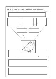 Sperlingskauz Arbeitsblatt und Lösung