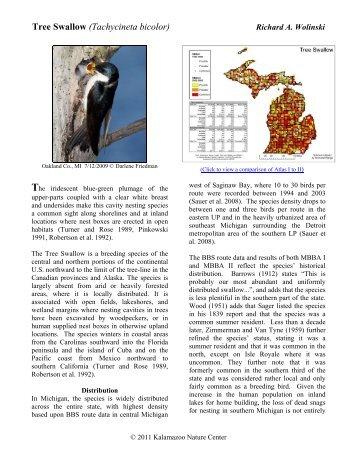 Tree Swallow - Michigan Breeding Bird Atlas Website
