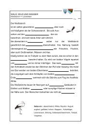 Weißstorch Lückentext