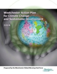 Westchester Action Plan, 2008 - Westchester County Government