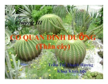 Chuong 3 (Than).pdf