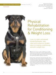 Physical Rehabilitation for Conditioning & Weight Loss