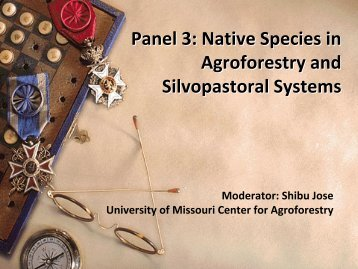 Panel 3: Native Species in Agroforestry and Silvopastoral Systems