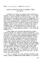 Analýza železářských strusek ze Šlakhamru u Žďáru nad Sázavou, s ...