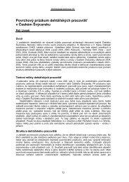Povrchový průzkum dehtářských pracovišť v Českém Švýcarsku, s. 72